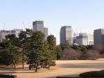 Japon 1555