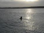 Daniel bañándose en San Andrés (Jose Ferri)