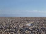 Salar de Atacama (Jose Ferri)