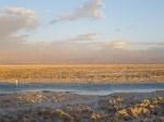 Laguna de Chaxa 2 (Jose Ferri)