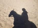 Sombra caballo Atacama (Jose Ferri)