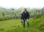 En el bosque de palmas (Jose Ferri)