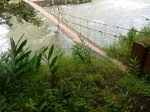 Puente sobre el Quindio (Jose Ferri)
