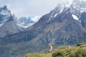 Mirador de los Cuernos del Paine (Jose Ferri)