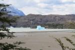Casquetes varados en la playa Grey (Jose Ferri)