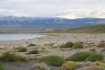 Lago Sarmeiento 8 (Jose Ferri)