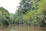 Paseo ecológico en Iguazú 2 (Jose Ferri)