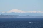 Cordillera nevada desde Chiloe_Jose Ferri