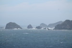 Costa noroeste de Chiloe 4_Jose Ferri