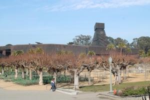 Deyong Museum_Jose Ferri