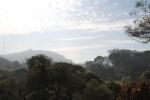 Golde Gate Park San Francisco_Jose Ferri