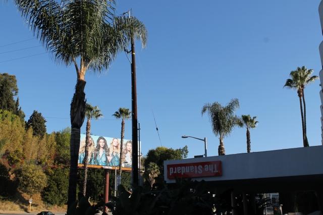 Hotel Standar Los Angeles_Jose Ferri