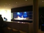 instalación viva en hotel the standar_Jose Ferri