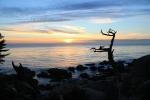 Puesta de sol en Pebble beach_Jose Ferri