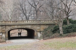 central-park-puente-new-york-jose-ferri