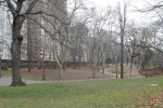 central-park-winter-new-york-jose-ferri