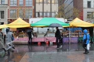 Green-market-new-york-quesos-jose-ferri