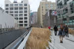 High-line-new-york-plantas-jose-ferri